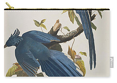 Columbia Jay Carry-all Pouch by John James Audubon