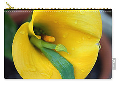 Come Out Come Out Carry-all Pouch by Marie Neder