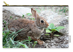 Carry-all Pouch featuring the photograph Coming Out Of Hiding by Sheila Brown