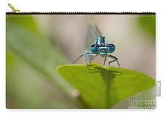 Common Blue Damselfly Carry-all Pouch