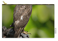 Common Buzzard Buteo Buteo, Bandhavgarh Carry-all Pouch by Panoramic Images