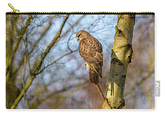 Common Buzzard Carry-all Pouch