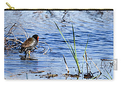 Carry-all Pouch featuring the photograph Common Gallinule by Gary Wightman