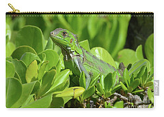 Common Iguana Frolicking In The Shrubbery Carry-all Pouch by DejaVu Designs