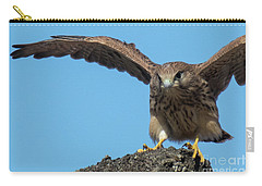 Carry-all Pouch featuring the photograph Common Kestrel Juvenile - Falco Tinnunculus by Jivko Nakev