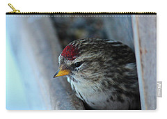 Carry-all Pouch featuring the photograph Common Redpoll by Ann E Robson