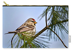 Carry-all Pouch featuring the photograph Common Redpoll Bird by Christina Rollo