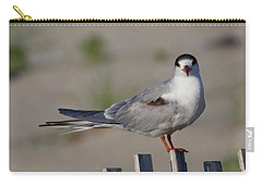 Common Tern Carry-all Pouch