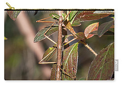 Carry-all Pouch featuring the photograph Common Walkingstick Or Northern Walkingstick Din0263 by Gerry Gantt