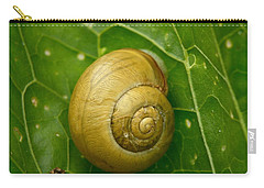 Carry-all Pouch featuring the photograph Conch by Jouko Lehto