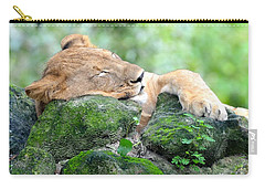 Contented Sleeping Lion Carry-all Pouch