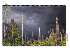 Carry-all Pouch featuring the photograph Contrasts by Cat Connor