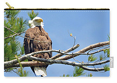 Carry-all Pouch featuring the photograph Cool Breeze by Glenn Gordon