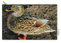 Carry-all Pouch featuring the photograph Cool Duck by Roger Bester