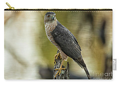 Cooper's Hawk Carry-all Pouch by Geraldine DeBoer