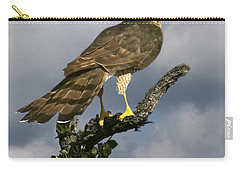 Cooper's Hawk On Watch Carry-all Pouch