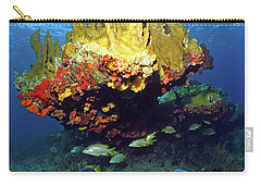Coral Reef Scene, Calf Rock, Virgin Islands Carry-all Pouch