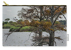 Carry-all Pouch featuring the photograph Cormorant by Paul Freidlund