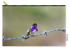 Costa's Hummingbird Carry-all Pouch
