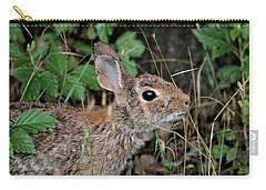 Carry-all Pouch featuring the photograph Cottontail Bunny Breakfast by Sheila Brown