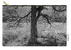 Coulee Oak Carry-all Pouch