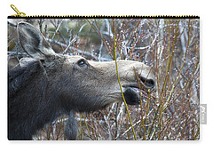 Cow Moose Dining On Willow Carry-all Pouch