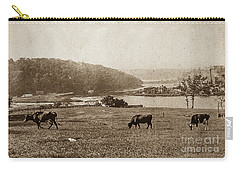 Carry-all Pouch featuring the photograph Cows On Baker Field by Cole Thompson