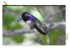 Coy Costa's Hummingbird Carry-all Pouch