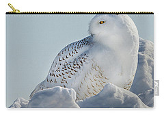 Carry-all Pouch featuring the photograph Coy Snowy Owl by Rikk Flohr