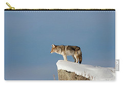 Coyote At Overlook Carry-all Pouch