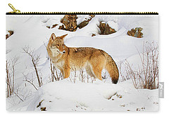 Coyote On Snowy Hill Carry-all Pouch by Steve McKinzie