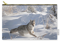 Coyote On The Move Carry-all Pouch