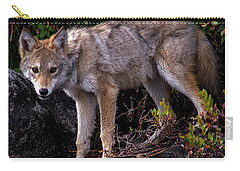 Coyote Portrait Carry-all Pouch