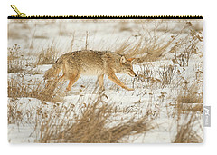 Coyote Stalk Carry-all Pouch
