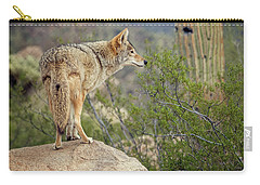 Coyote Carry-all Pouch by Tam Ryan