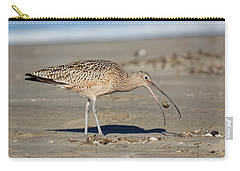 Crab Toss - Curlew Carry-all Pouch