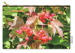 Carry-all Pouch featuring the photograph Cranberry Cluster by Jim Sauchyn