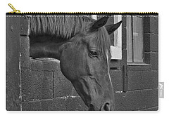 Crazy For Horses Carry-all Pouch