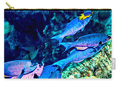 Carry-all Pouch featuring the photograph Creole Wrasse And Little Spanish Hogfish by Perla Copernik