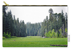 Carry-all Pouch featuring the photograph Crescent Meadow by Kyle Hanson