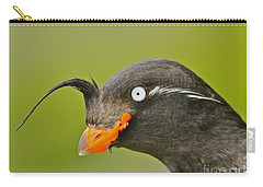 Crested Auklet Carry-all Pouch