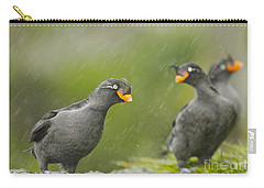 Crested Auklets Carry-all Pouch