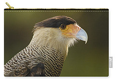 Crested Caracara Polyborus Plancus Carry-all Pouch by Pete Oxford