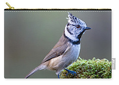Crested Tit Carry-all Pouch by Torbjorn Swenelius