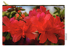 Crimson Lights Carry-all Pouch