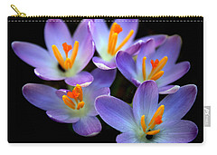 Carry-all Pouch featuring the photograph Crocus Aglow by Jessica Jenney