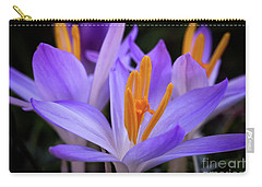 Carry-all Pouch featuring the photograph Crocus Explosion by Douglas Stucky