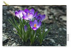 Crocus In Bloom #2 Carry-all Pouch
