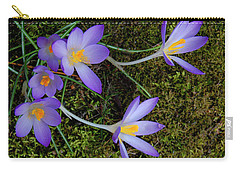 Carry-all Pouch featuring the photograph Crocus Outreach by Roger Bester