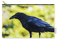 Carry-all Pouch featuring the photograph Crow Perched by Jonny D